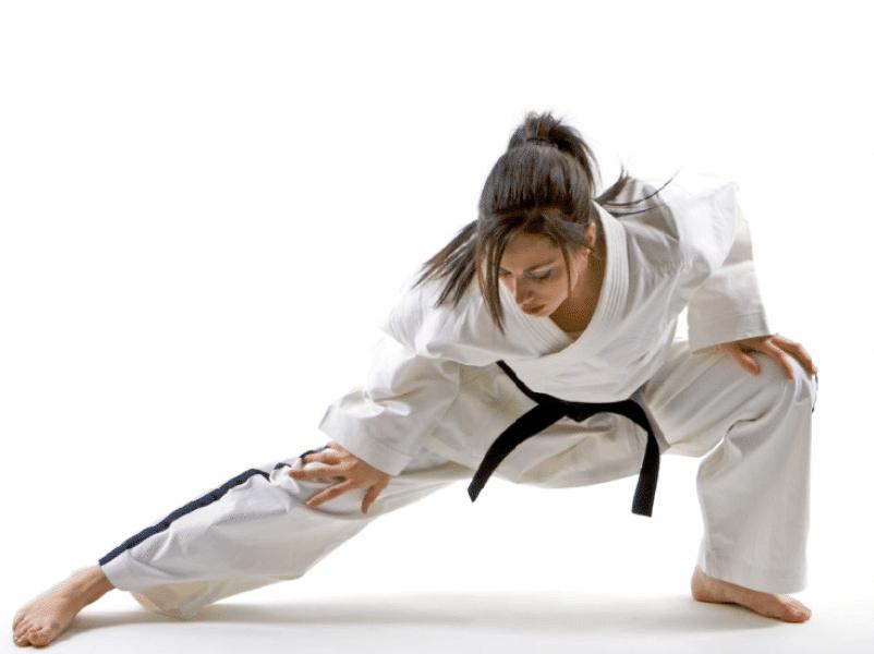 3 1, Kaizen Black Belt Academy Dexter MI