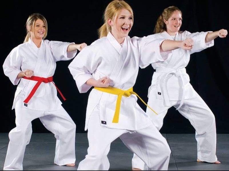 3, Kaizen Black Belt Academy Dexter MI