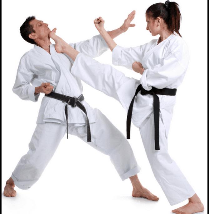 7, Kaizen Black Belt Academy Dexter MI